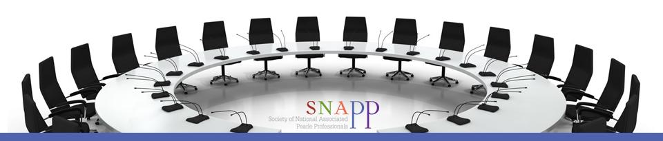 SNAPP_Banner_BoardMembers
