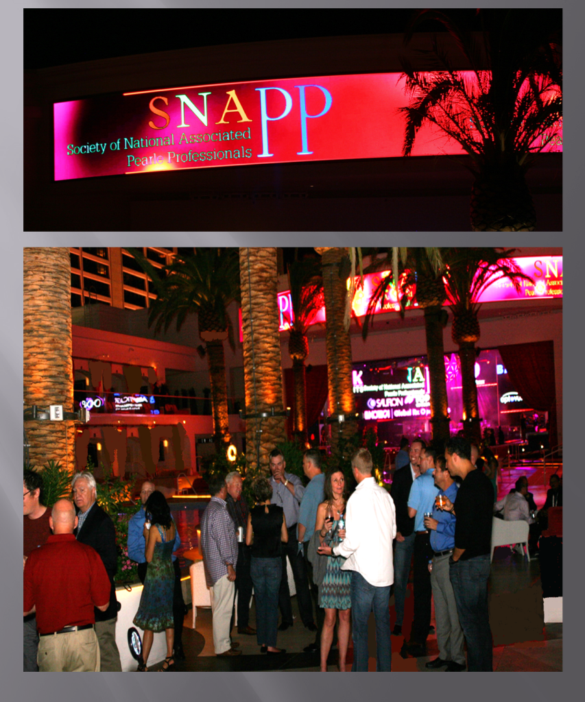 snapp welcome recep picture for new website