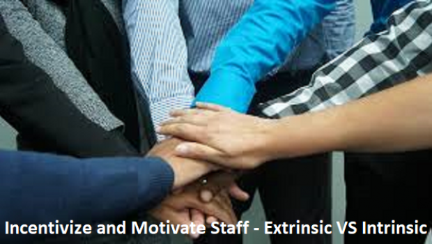 The Best Ways to Incentivize and Motivate Staff – Extrinsic VS Intrinsic
